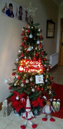 Arbol de navidad en Kilkenny, Irlanda