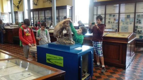 De visita en el museo en Dublín