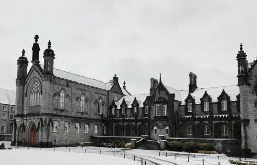 Galeria Kilkenny 16
