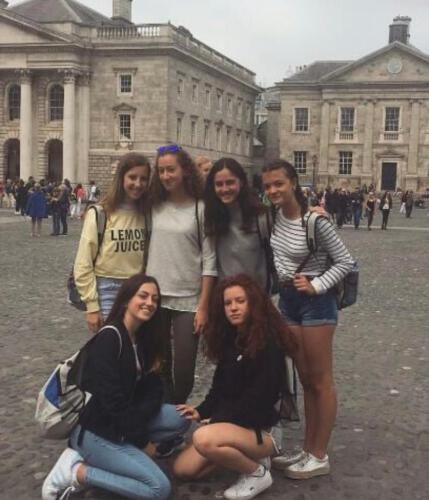 Galeria Kilkenny 18